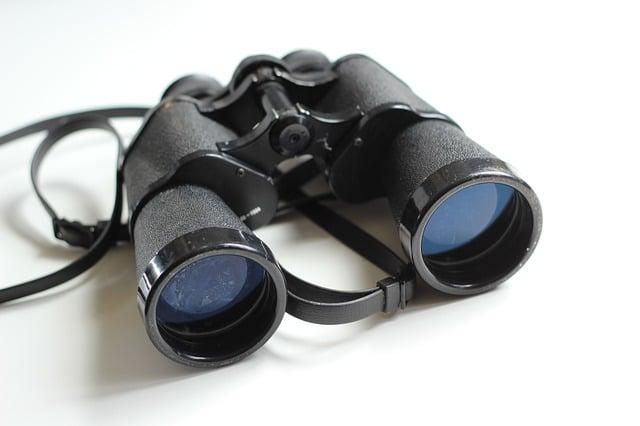 binoculares fernglas
