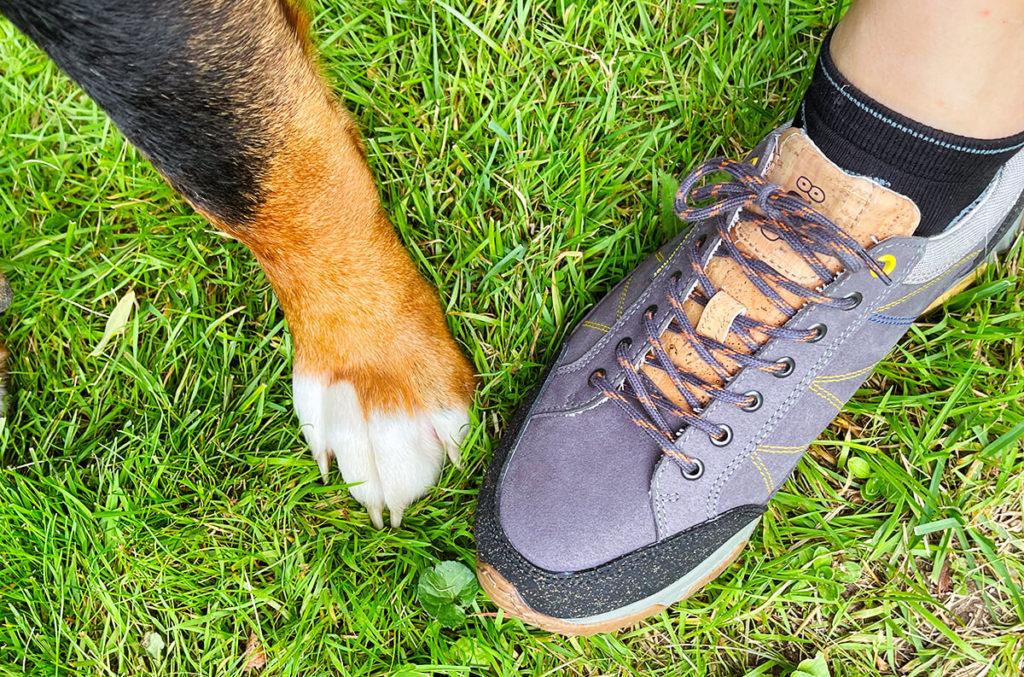 Bei dem Namen Doghammer musste dieses Foto einfach sein… Mein Hund hat vermutlich ein noch ökologischeres Schuhwerk, aber ich bin auch schon nah dran.