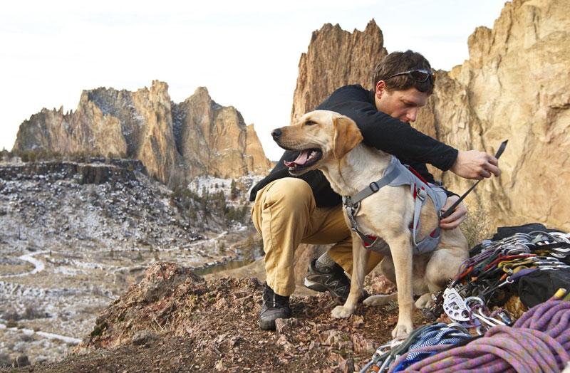 Kletterausrüstung Für Hunde : Klettern mit vier pfoten und dem hundeabseilgeschirr von ruffwear