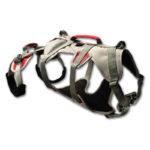 Klettern mit vier Pfoten - und dem Hundeabseilgeschirr von Ruffwear